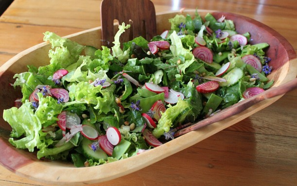 A simple green salad jazzed up with homegrown stripey beetroot, radishes & borage flowers.