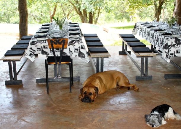 Mikey & Gypgyp waiting for our first ever visitors, who had traveled to Livingstone from Finland.