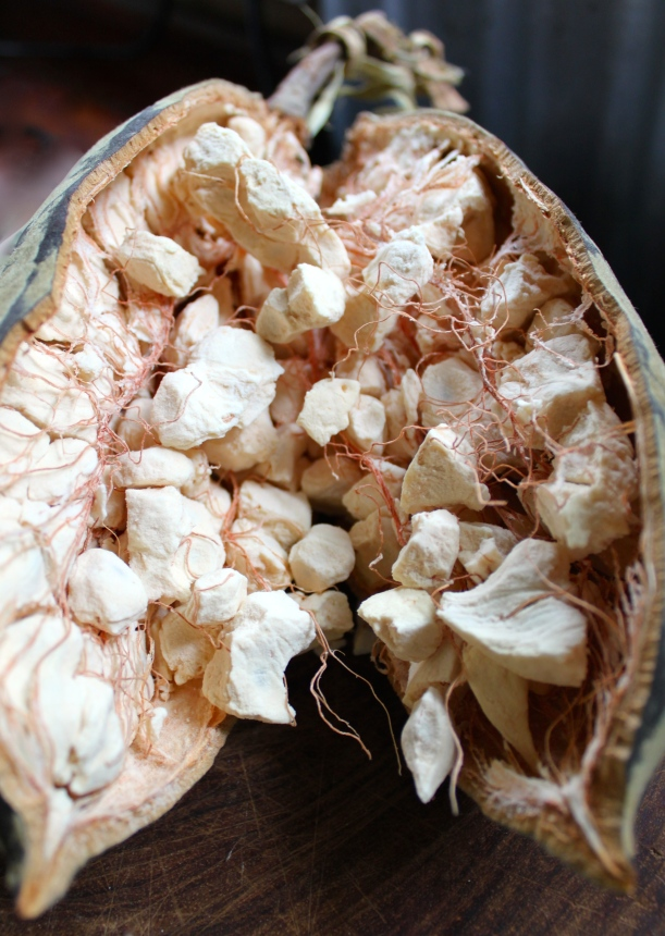 The guts of the baobab fruit.