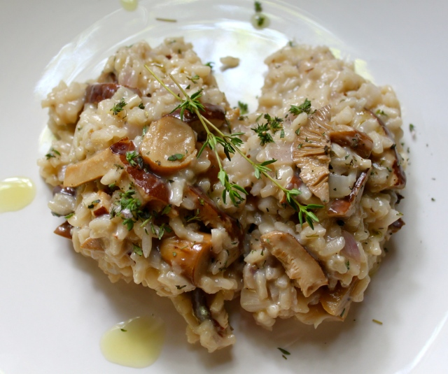 Wild Mushroom Risotto drizzled with White Truffle Oil.