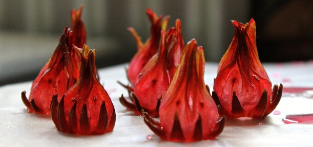 Candied rosella 'flames' to garnish the cream pie.