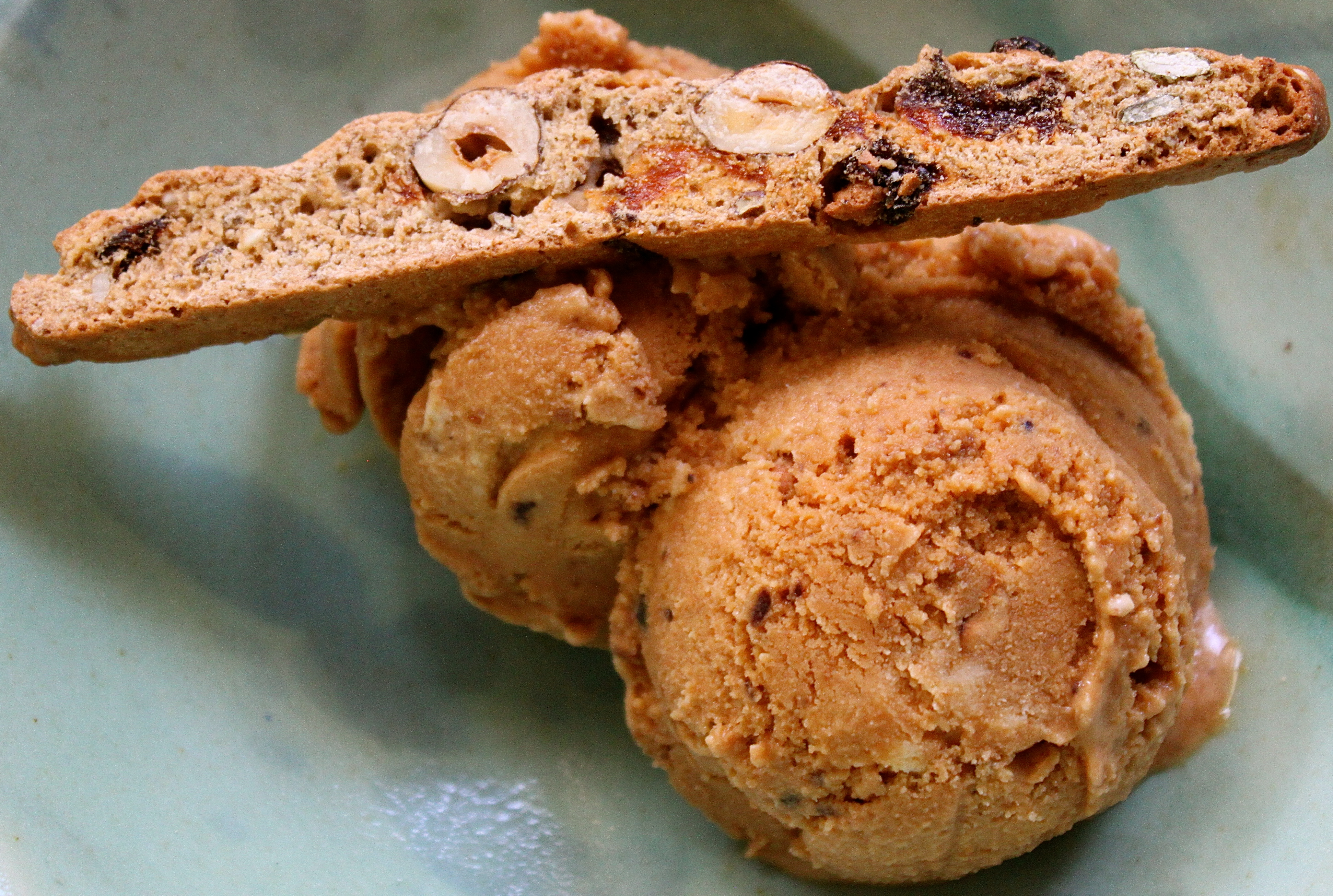 Hazelnut Praline Ice Cream.