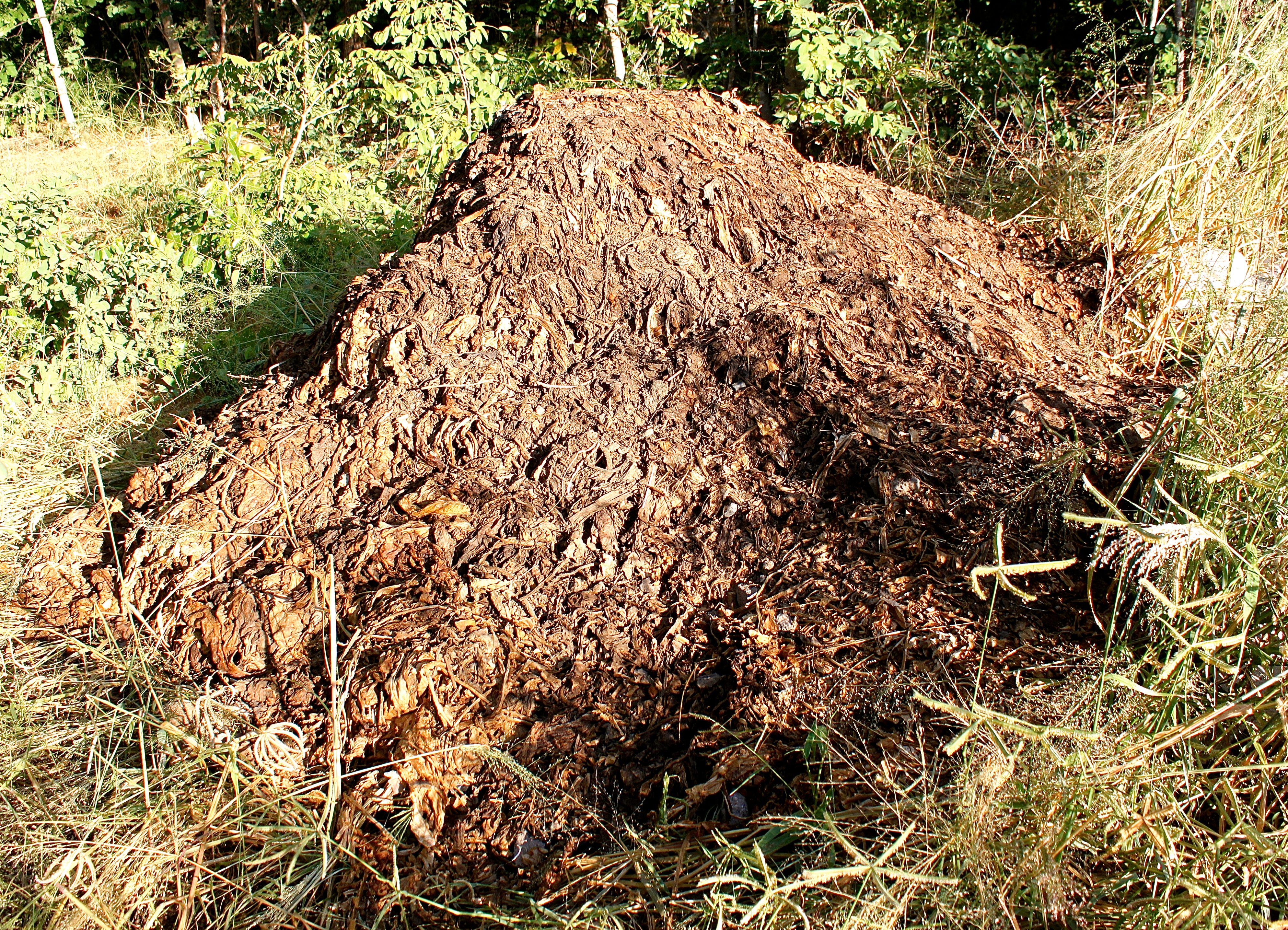 Tobacco scrap is filled with nitrogen, and is used as a mulch on our garden.