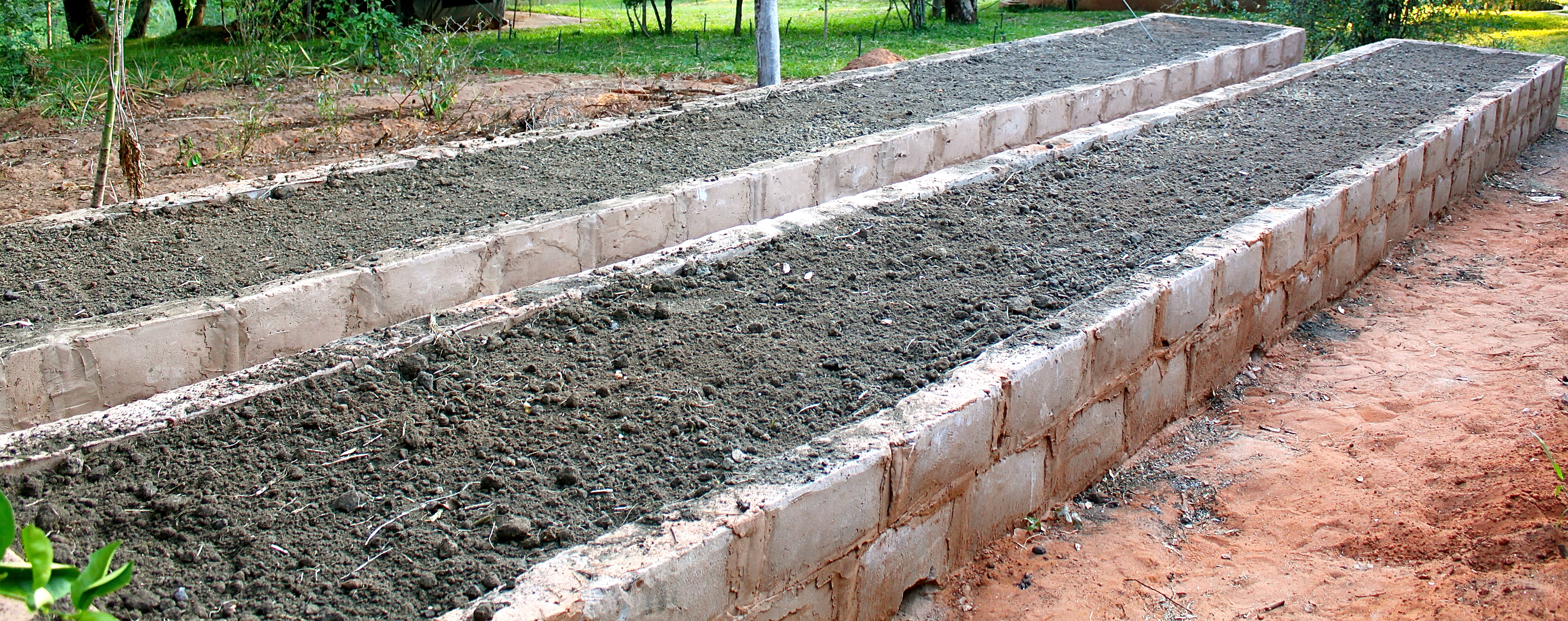 The finished raised beds filled with clay-filled soil, compost, and chicken manure, sold to us by a neighbor.