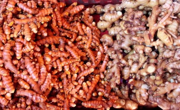 Bounty of ginger & turmeric harvested from the garden.