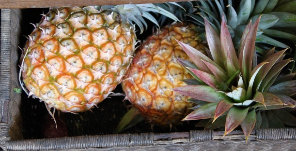 The warmer weather is bringing on the pineapples ... yay!